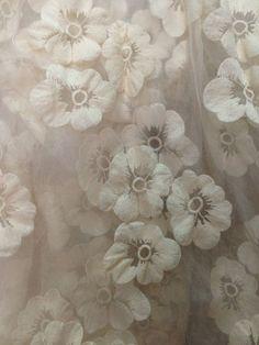 Fines fleurs de dentelle
