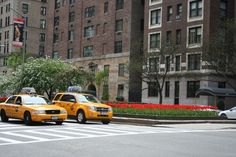 Park Avenue Tulips http://bigcitylittleblog.com/wp-content/uploads/2013/04/taxis-and-tulips-park-avenue-new-york.jpg