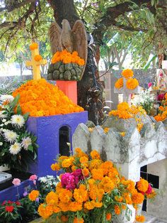 Day of the Dead, 2004    on the road to Tepoztlan, Mexico
