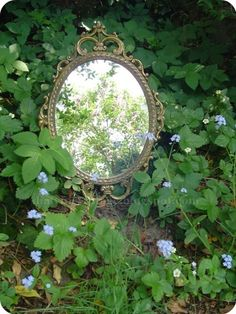 """What a great idea... Give your garden a """"Magic Window"""""""