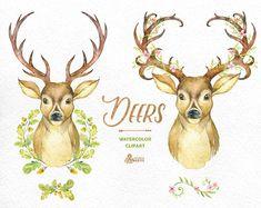 Venados. Acuarela ciervos con cornamentas, de la mano pintado clipart, floral, invitar, país, diy Prediseñadas, cuernos, flores, venados boho
