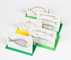 Witshop - New Talent - Cards - Fish