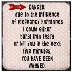 Funny pregnancy quote!