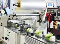 Packaging machines and plastic packaging benefit the food industry a great deal. Take a look at this article to see how you can use plastic packaging for your products. Plastic Packaging, Food Packaging, Packaging Machine, Food Industry, Espresso Machine, Benefit, Kitchen Appliances, Canning, Business