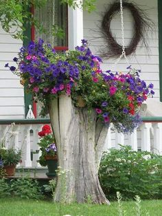 hanging basket .. X ღɱɧღ ||   great idea on how to use a tree stump