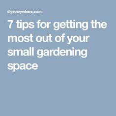 7 tips for getting the most out of your small gardening space