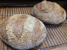 Sourdough Beer Rye from my favorite bread book (see comment below for source). It includes a bottle of dark beer, several types of grains, caraway, salt, and a cup of starter. I add at least another cup of flour beyond what the recipe calls for, including a cup or 2 of King Arthur's First Clear. It makes it chewier, I think!