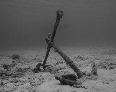 Black and White Anchor Underwater 8x10 Nautical Home Decor Masculine Underwater Photograph. $30.00, via Etsy.