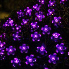 Innoo Tech Purple 5M 50 Led Blossom Solar Fairy Lights for Gardens, Homes, Christmas, Partys, Weddings Innoo Tech,http://www.amazon.com/dp/B009A7AS06/ref=cm_sw_r_pi_dp_nh4rtb0GBZQ9RJEB