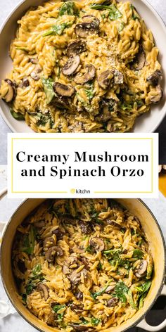 One-Pot Creamy Mushroom and Spinach Orzo A one-pot recipe for creamy orzo pasta with mushrooms, spinach, and plenty of Parmesan cheese. - This Creamy Mushroom Orzo is Supremely Satisfying Orzo Recipes, Vegetarian Recipes, Dinner Recipes, Cooking Recipes, Healthy Recipes, Risoni Recipes, Healthy One Pot Meals, Skillet Recipes, Cooking Gadgets