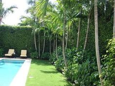 would love for the perimeter of our grass to look like this- High hedges and tropical plantings to make {pool} private Florida Landscaping, Backyard Pool Landscaping, Tropical Landscaping, Landscaping With Rocks, Modern Landscaping, Landscaping Ideas, Modern Patio, Tropical Garden, Modern Landscape Design