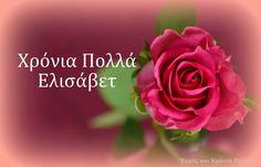 Name Day, Happy Birthday, Flowers, Plants, Decor, Texting, Names, Happy Aniversary, Dekoration