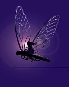 Those who pass before us, always hitch a ride on the back of a dragonfly to let us know they are still with us.