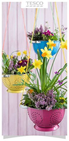 Garden planter idea: Put old kitchen colanders to good use and transform them into pretty hanging baskets for plants, brilliant for updating your garden for spring.   Tesco Living