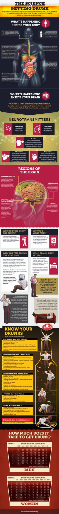 The science of getting drunk #infographic