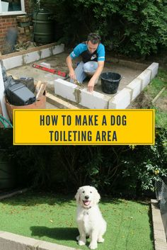 Are you fed up of your dog weeing on the grass and dog wee killing it? Well how about you build a dog toileting area in your garden.