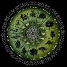 significado arvore da vida celta - Pesquisa Google