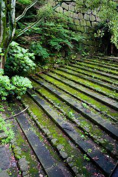 Steps leading to Osaka Castle, Japan by VincentPhotomaniac