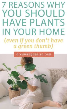Considering getting house plants? Indoor plants are great for decor, air purifying, and more! Find out my 7 reasons why you should have the best easy to care for plants in your home. Little Plants, Small Plants, Indoor Plants, Potted Plants, Gardening Tips, Indoor Gardening, I Can Do It, Pregnancy Workout, New Things To Learn