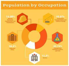 WTF Visualizations — Sample population.