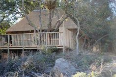 Marc treehouse camp lodge, affordable Kruger safaris in the heart of it all. http://www.krugertours.com