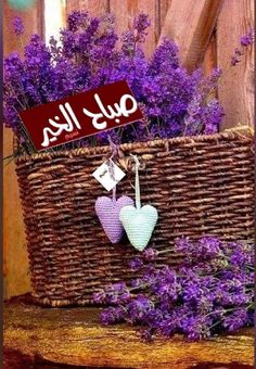 Blessed Friday, Morning Texts, Good Morning Photos, Arabic Love Quotes, Christmas Ornaments, Holiday Decor, Words, Flowers, Lavender