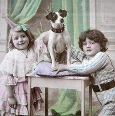 Dog with children photo1900s