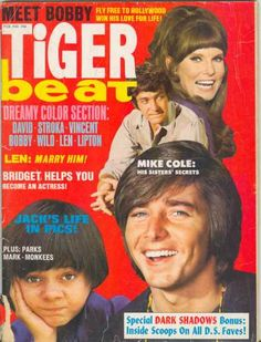 Tiger Beat - 1970...every month my Mom brought my sister and I the latest copy when she went grocery shopping...couldn't wait till she got home with them....