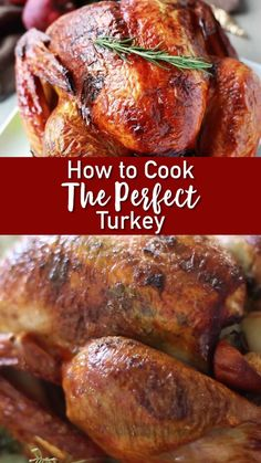 Have you ever wanted the perfect turkey? There are a ton of good ways to cook a turkey out there, but this is honestly the best! recipe videos How to Cook The PERFECT Turkey Cooking The Perfect Turkey, Cooking Turkey, Turkey Baking Times, Cook Turkey In Oven, Cooking Zucchini, Turkey Food, Cooking Panda, Slow Cooker Turkey, Vegetarian Cooking