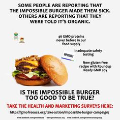 Link in Bio to Impossible Burger Health Surve