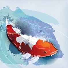 Koi Fish Vector Graphic - DryIcons