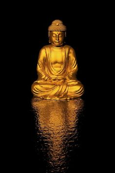 """The Buddha taught that we should practice helping others while cultivating deep concentration, compassion, and wisdom. He further taught that enlightenment is not a mystical, transcendent experience but an ongoing process, calling for intimacy and transparency; and that suffering diminishes when confusion and fear change into openness and strength. —Joan Halifax, """"The Lucky Dark"""""""