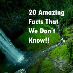 Amazing Facts Amazing Facts 1 We replace every particle in our body every seven years.