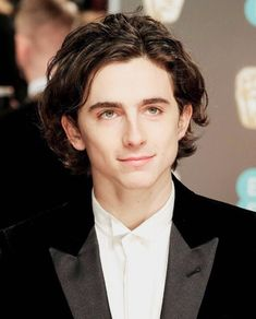 Call Timothee Chalamet by his Name Zayn Malik, Niall Horan, Liam Payne, Louis Tomlinson, Beautiful Boys, Beautiful People, Harry Styles, Timmy T, Civil War Photos