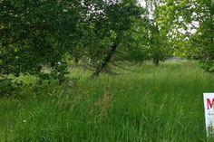 Terrain constructible Gironde Saugon