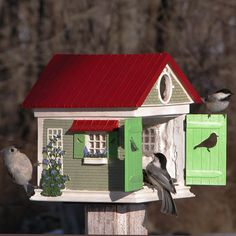 Chickadee's and Titmice checking out this stylish bird house