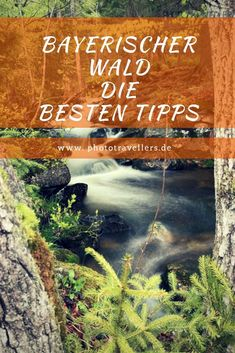 Bavarian Forest: Our tips for your vacation - Reise Ideen Bavarian Forest, Best Outdoor Lighting, Acevedo, Design Your Dream House, Ways To Relax, Hiking Tips, Romantic Homes, Camping Hacks, Appalachian Trail