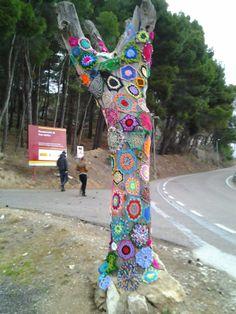 Centro de Estudios Borjanos: Un árbol singular en el Santuario de Misericordia
