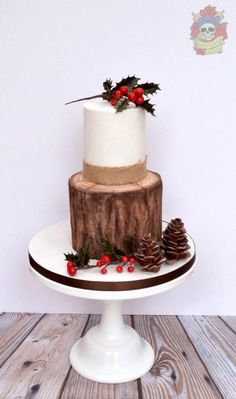 Rustic Christmas Cake  - Cake by Karen Keaney
