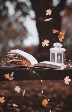 Travel Discover Aesthetic Pictures - Fushion News Autumn Photography Book Photography Creative Photography Amazing Photography Aesthetic Photography Nature Photography Lighting Photography Backdrops Photography Captions Photography Hashtags Autumn Photography, Book Photography, Creative Photography, Amazing Photography, Photography Lighting, Photography Captions, Photography Backdrops, Photography Hashtags, Aesthetic Photography Nature