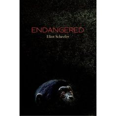 Young adult fiction- Endangered by Eliot Schrefer Possibly a good book to teach the history of the Congo, Africa, and preservation of animals. Could be good for a high schooler. Read reviews carefully.