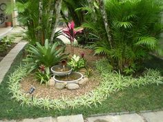 J&M Landscaping And Tree Service Tropical Landscaping, Landscaping Plants, Tropical Garden, Front Yard Landscaping, Garden Nook, Garden Deco, Lawn And Landscape, Garden Landscape Design, Water Garden