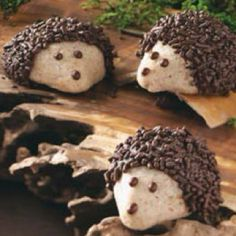 Chocolate-Pecan Hedgehog Cookies Recipe- Recipes Unlike the real woodland creatures, these chocolate-coated hedgehogs dwell on snack plates and cookie trays. The little guys are fun to make and eat. Chocolate Sprinkles, Melting Chocolate, Chocolate Chips, Cookie Recipes, Dessert Recipes, Desserts, Hedgehog Cookies, Hedgehog Treats, Yummy Treats