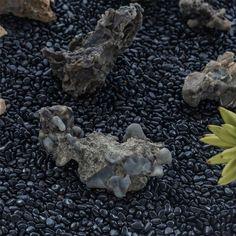 400g Black Natural Polished Pebbles 0.5cm 1cm length | Etsy Terrarium Containers, Glass Terrarium, Succulent Terrarium, Terrariums, Terrarium Ideas, Planter Ideas, Bonsai Garden, Garden Planters, Garden Bar