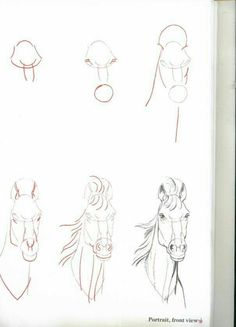 Draw Horses Learn to Draw Step By Step: Animal - Horse Head View) Drawing Skills, Drawing Lessons, Drawing Techniques, Drawing Reference, Drawing Sketches, Sketching, Horse Drawings, Animal Drawings, Art Drawings