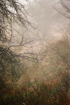 "Saatchi Art Artist John Bour; Photography, ""rain VII"" #art"