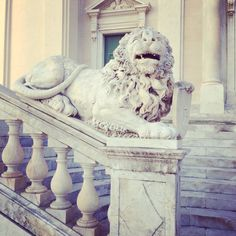 Lion at church in Lavagna, Italy #travelcrazyone