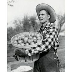 Side profile of a mid adult man holding a basket of apples Canvas Art - (24 x 36)