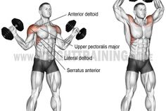 Dumbbell w-press exercise instructions and video dumbbellworkout Dumbbell w-press An isolation exercise Target muscle Anterior Deltoid Synergists Lateral Deltoid Upper Pectoralis Major Supraspinatus Serratus Anterior and Middle and Lower Trapezius # Traps Workout At Home, Gym Workout Tips, Weight Training Workouts, Fitness Workouts, At Home Workouts, Fitness Tips, Fitness Gear, Fitness Nutrition, Workout Trainer