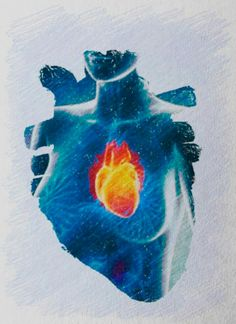 Womans heart Ice Heart, Heart Art, Arte Obscura, Heart Painting, Call Art, I Love Heart, Anatomical Heart, Heart Images, Human Heart